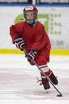 CCM Hockey Camp 2015 i Frederikshavn