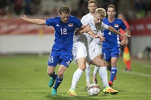 Danmark - Liechtenstein