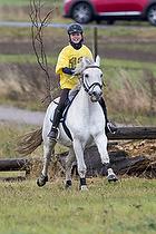 Holdspringning Pony og Hest 50-80 cm