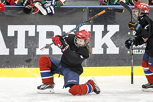 Odense IK - Silkeborg-Aarhus Ishockey