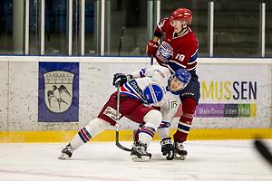Gladsaxe Bears - Hvidovre IK