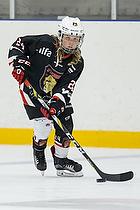 Trelleborg Vikings U-10 Cup