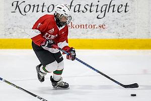Tyringe Hockey Spring Challenge 2017