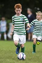 Viborg FF - St�vring IF