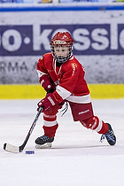 R�dovre Ishockey
