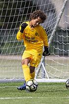 Str�msgodset IF - FK Viborg