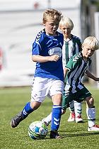 Holb�k B&I - Fl�ng-Hedehusene Idr�t