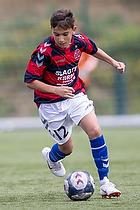 BK Frem - FK Viborg