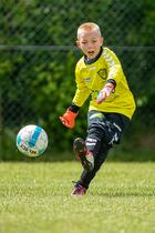 FC Holte - Viking