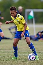 Br�ndbyernes IF - FC Plzen