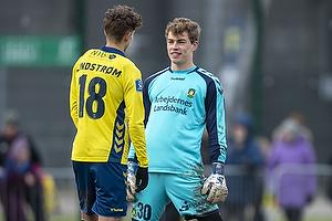 Jesper Lindstr�m (Br�ndby IF), Mads Hermansen (Br�ndby IF)